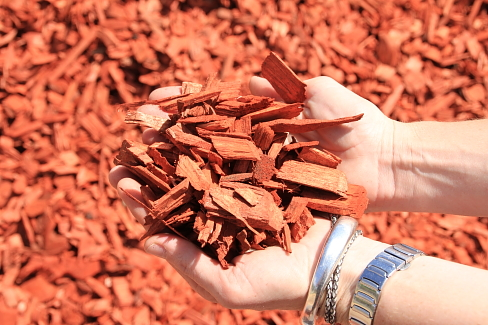 Red Bark Chips
